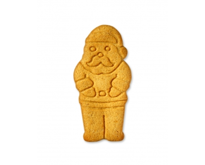GINGERBREAD SANTA biscuit image